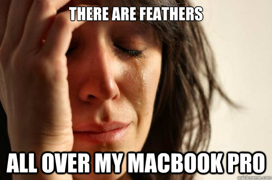 there are feathers all over my macbook pro - there are feathers all over my macbook pro  First World Problems