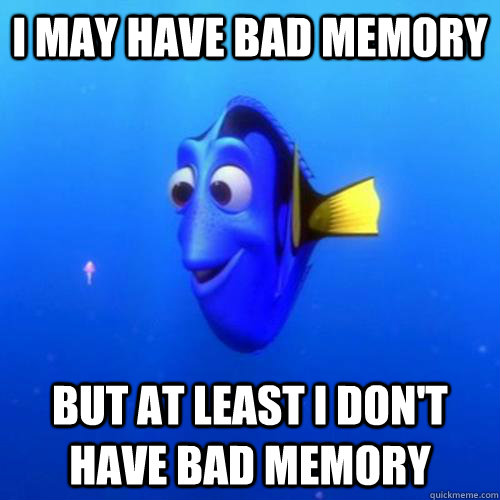 i may have bad memory but at least i don't have bad memory - i may have bad memory but at least i don't have bad memory  dory
