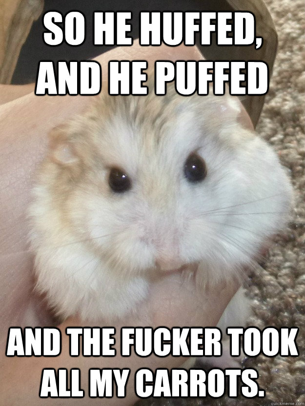 So he huffed,  and he puffed and the fucker took all my carrots.  Sad Hamster