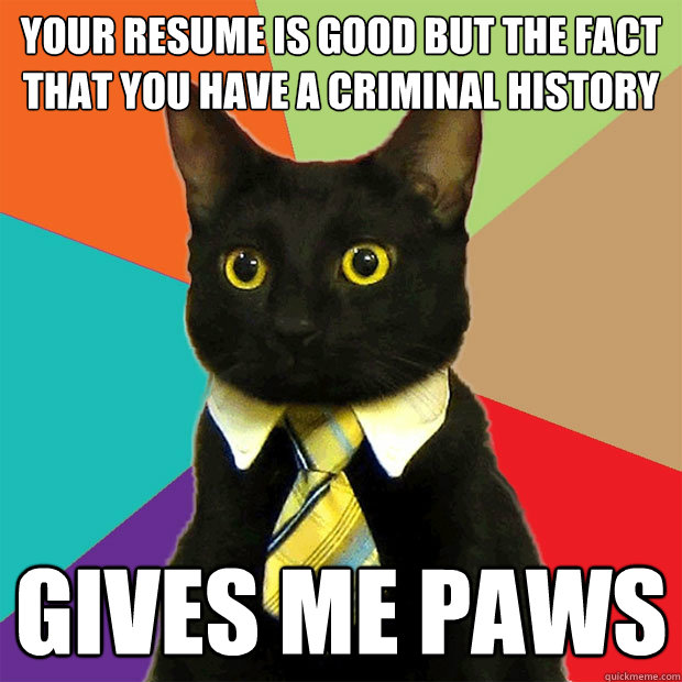 Your resume is good but The fact that you have a criminal history gives me paws - Your resume is good but The fact that you have a criminal history gives me paws  Business Cat