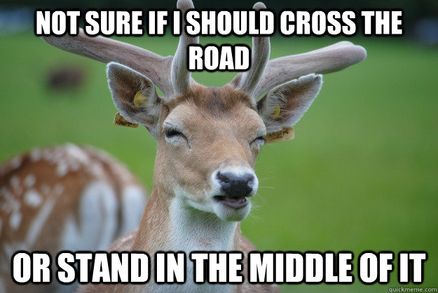 Not Sure if i should cross the road Or stand in the middle of it