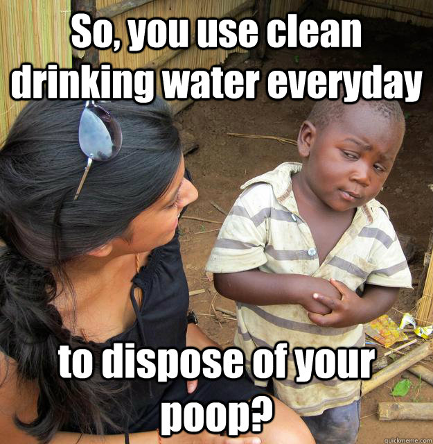 So You Use Clean Drinking Water Everyday To Dispose Of Your Poop
