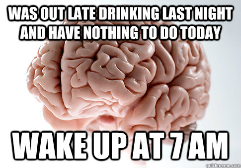 Was out late drinking last night and have nothing to do today wake up at 7 am - Was out late drinking last night and have nothing to do today wake up at 7 am  Scumbag Brain