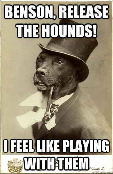 Benson, release the hounds! i feel like playing with them  - Benson, release the hounds! i feel like playing with them   Old Money Dog
