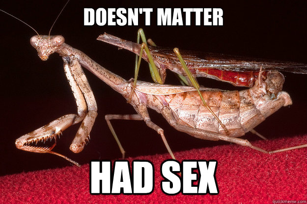 Doesn't matter had sex - Doesn't matter had sex  Misc
