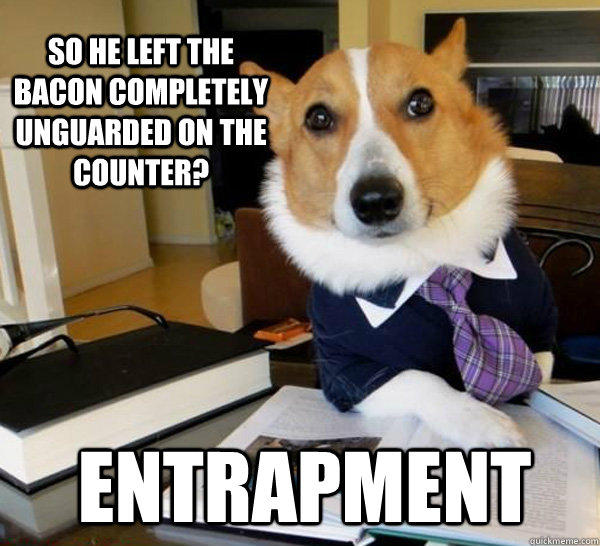 SO HE left the bacon completely unguarded on the counter? ENTRAPMENT - SO HE left the bacon completely unguarded on the counter? ENTRAPMENT  Lawyer Dog