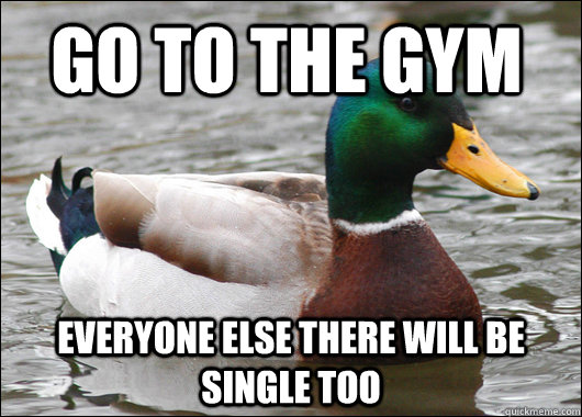 Go to the gym everyone else there will be single too - Go to the gym everyone else there will be single too  Actual Advice Mallard