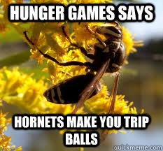 hunger games says  hornets make you trip balls - hunger games says  hornets make you trip balls  Hunger Games Says Hornets