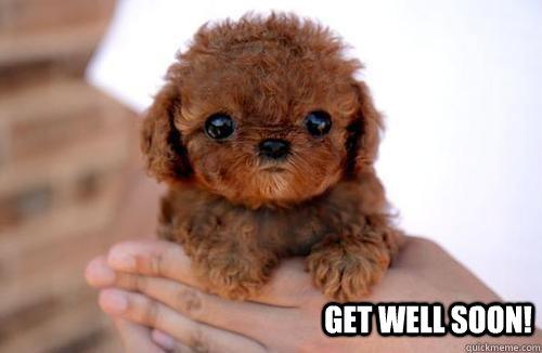 Get well soon! - Sad Puppy - quickmeme