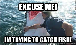 Excuse Me Im Trying To Catch Fish Move Shark Quickmeme