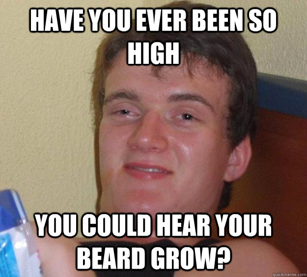 have you ever been so high you could hear your beard grow? - have you ever been so high you could hear your beard grow?  10 Guy