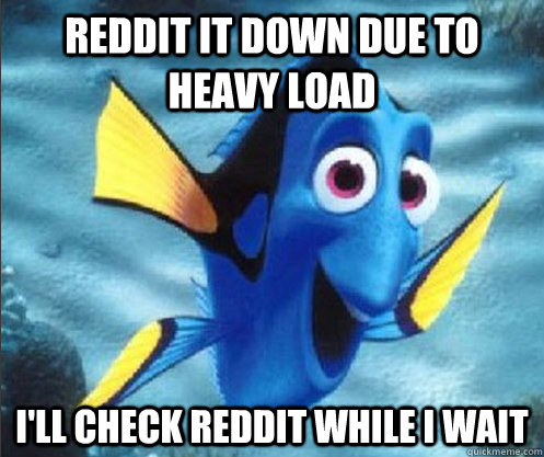 Reddit it down due to heavy load i'll check reddit while i wait - Reddit it down due to heavy load i'll check reddit while i wait  optimistic dory