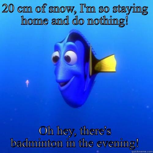 20 CM OF SNOW, I'M SO STAYING HOME AND DO NOTHING! OH HEY, THERE'S BADMINTON IN THE EVENING! dory