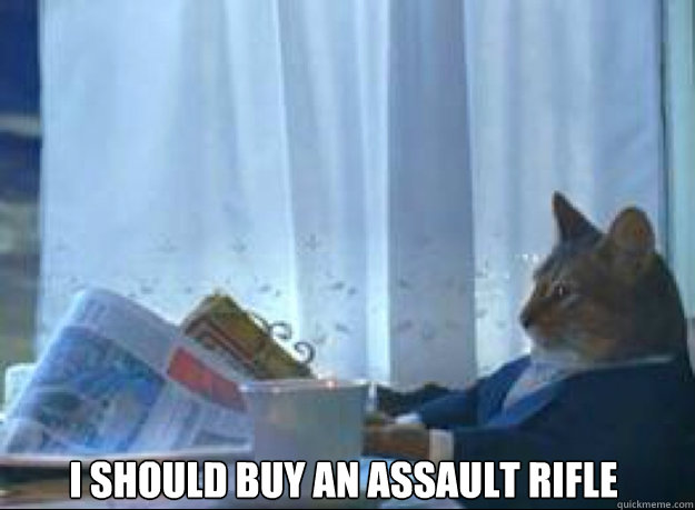 i should buy an assault rifle  - i should buy an assault rifle   I should buy a boat cat