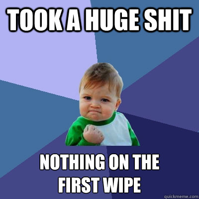 Took a huge shit nothing on the  first wipe - Took a huge shit nothing on the  first wipe  Success Kid