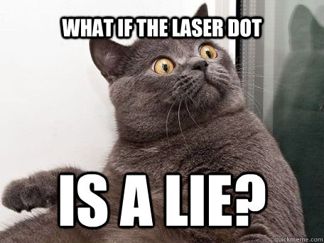 what if the laser dot is a lie?  conspiracy cat