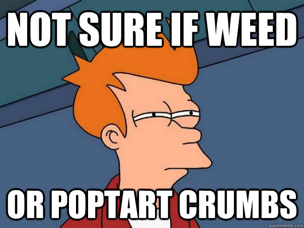 Not sure if weed Or poptart crumbs - Not sure if weed Or poptart crumbs  Futurama Fry