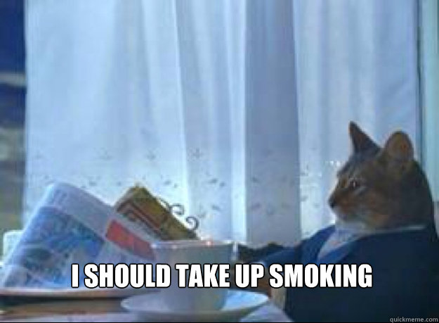 I should take up smoking  - I should take up smoking   I should buy a boat cat