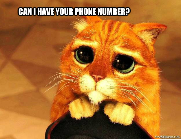 Can I have your phone number?