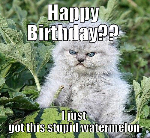 HAPPY BIRTHDAY?? I JUST GOT THIS STUPID WATERMELON German Kitty