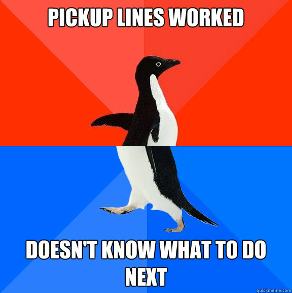 pickup lines worked doesn't know what to do next - pickup lines worked doesn't know what to do next  Socially Awesome Awkward Penguin