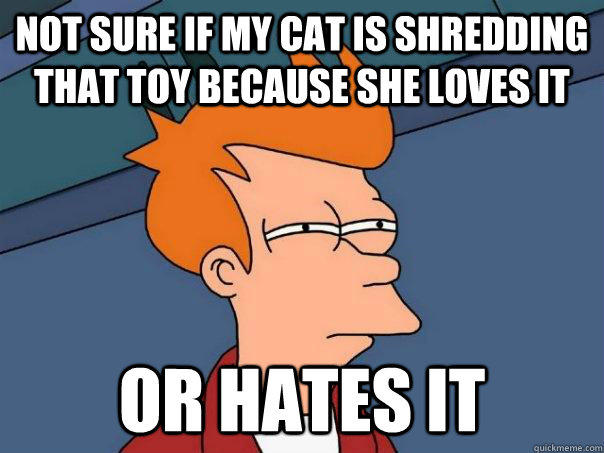 not sure if my cat is shredding that toy because she loves it or hates it - not sure if my cat is shredding that toy because she loves it or hates it  Futurama Fry