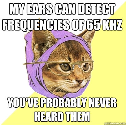 My ears can detect frequencies of 65 kHz You've probably never heard them - My ears can detect frequencies of 65 kHz You've probably never heard them  Hipster Kitty