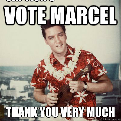Vote Marcel Thank you very much Caption 3 goes here