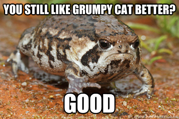 You still like grumpy cat better? good - You still like grumpy cat better? good  Misc