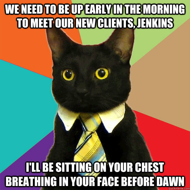 we need to Be up early in the morning to meet our new clients, jenkins i'll be sitting on your chest breathing in your face before dawn  - we need to Be up early in the morning to meet our new clients, jenkins i'll be sitting on your chest breathing in your face before dawn   Business Cat