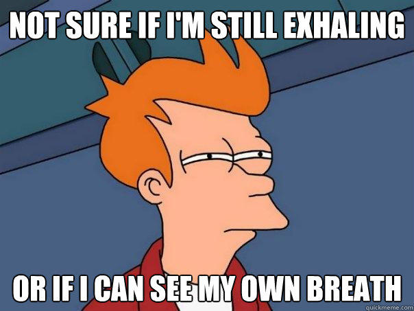 Not sure if I'm still exhaling Or if i can see my own breath - Not sure if I'm still exhaling Or if i can see my own breath  Futurama Fry