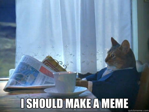 I SHOULD MAKE A MEME - I SHOULD MAKE A MEME  The One Percent Cat