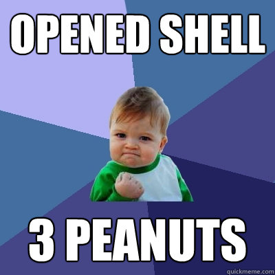 opened shell 3 peanuts - opened shell 3 peanuts  Success Kid