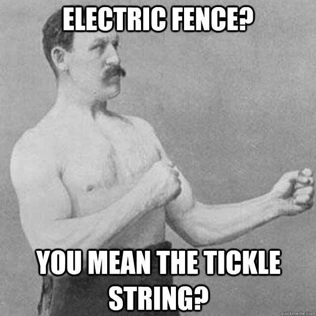 Electric Fence? You mean the tickle string? - Electric Fence? You mean the tickle string?  overly manly man