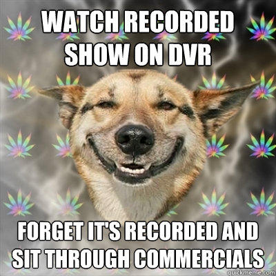 Watch recorded show on DVR forget it's recorded and sit through commercials  Stoner Dog