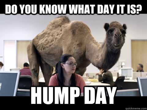 Do you know what day it is? Hump day