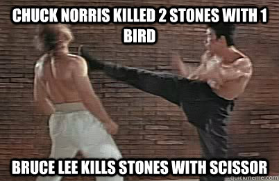 Chuck Norris killed 2 stones with 1 bird Bruce Lee kills stones with scissor