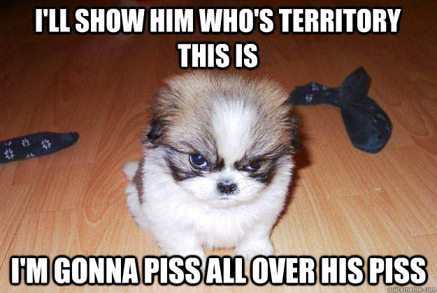 I'll show him who's territory this is I'm gonna piss all over his piss  Angry dog
