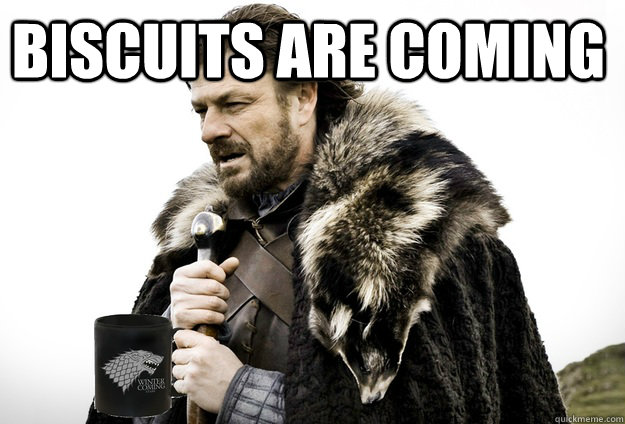 biscuits are coming - biscuits are coming  Tea break Ned Stark