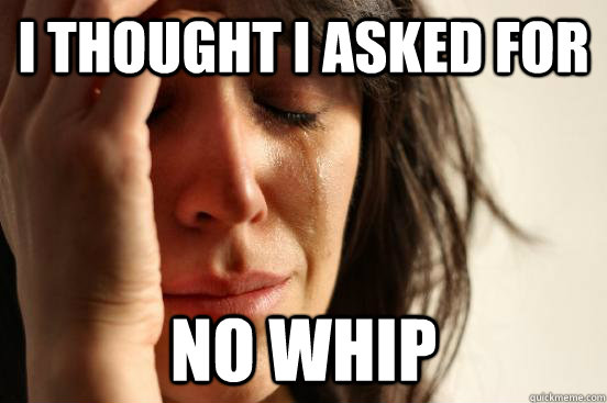 i thought I asked for no whip - i thought I asked for no whip  First World Problems