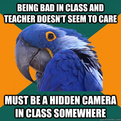 being bad in class and teacher doesn't seem to care must be a hidden camera in class somewhere - being bad in class and teacher doesn't seem to care must be a hidden camera in class somewhere  Paranoid Parrot