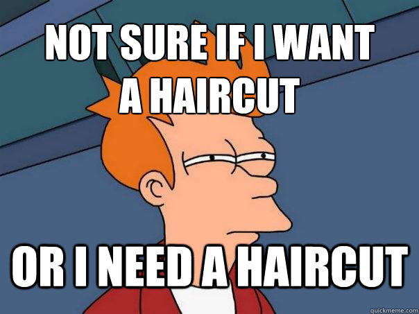 Not sure if I want  a haircut Or I need a haircut - Not sure if I want  a haircut Or I need a haircut  Futurama Fry