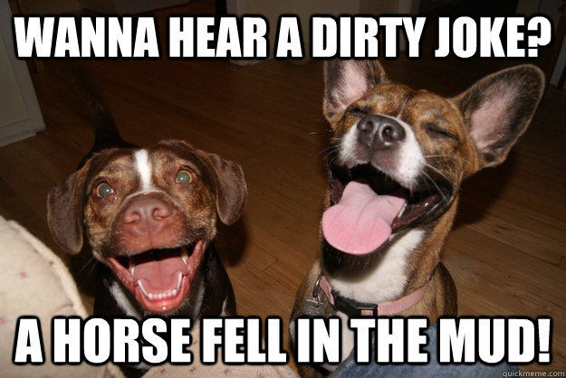 Wanna hear a dirty joke? a horse fell in the mud!