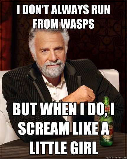 I don't always run from wasps but when i do, i scream like a little girl - I don't always run from wasps but when i do, i scream like a little girl  The Most Interesting Man In The World