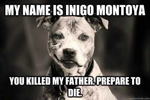 My Name is inigo montoya you killed my father. prepare to die.