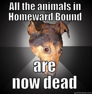 ALL THE ANIMALS IN HOMEWARD BOUND ARE NOW DEAD Depression Dog