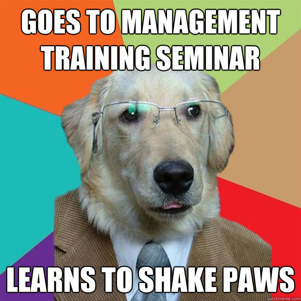 goes to management training seminar learns to shake paws - goes to management training seminar learns to shake paws  Business Dog