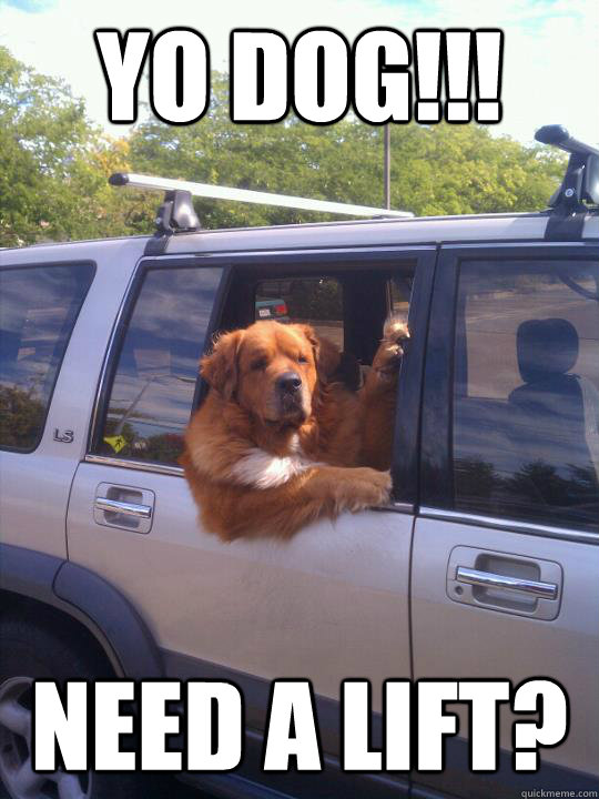 Yo DOg!!! need a lift?  Womans Best Friend Dog