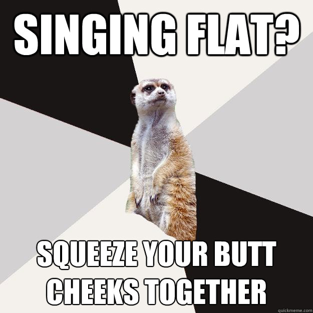 singing flat? squeeze your butt cheeks together - singing flat? squeeze your butt cheeks together  Musically inclined meercat
