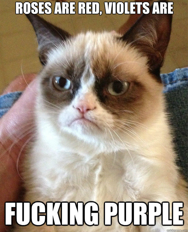 roses are red, violets are fucking purple  Grumpy Cat